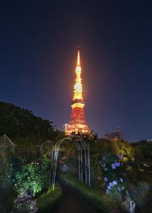 東京タワー 日本 東京都 港区の写真素材 [FYI03412789]