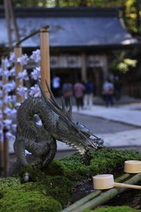 神社の手水舎の写真素材 [FYI03413085]