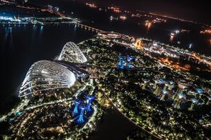 マリーナ・ベイ・サンズ展望台からの夜景(シンガポール)の写真素材 [FYI03413805]