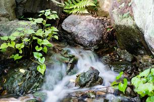 小さな滝の写真素材 [FYI03414039]