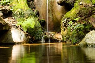 一筋の滝の写真素材 [FYI03414041]