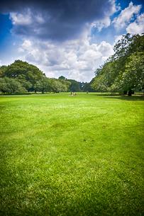 芝生の写真素材 [FYI03414048]