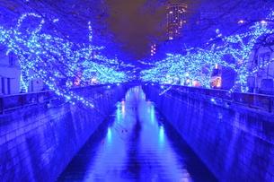 青の洞窟の写真素材 [FYI03414152]