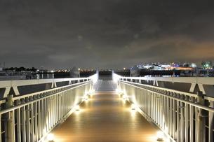 夜の桟橋の写真素材 [FYI03414174]