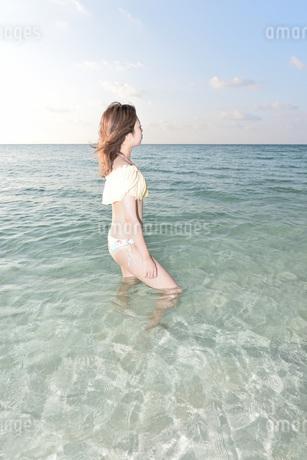 水着の若い女性の写真素材 [FYI03414449]