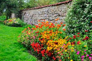 エストニア・北部にある18世紀の建物でエストニアで最も早く修復された領主の館のパルムセの館(現在は公園の情報センターや博物館として使用)敷地内に作られた花壇に咲くサルビヤ等のいろいろな花の写真素材 [FYI03414652]