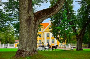 エストニア・北部にある18世紀の建物でエストニアで最も早く修復された領主の館のパルムセの館(現在は公園の情報センターや博物館として使用)の本館の庭園を一周巡る観光馬車の写真素材 [FYI03414716]