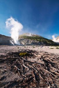 硫黄山とハイマツの枯れ木の写真素材 [FYI03414738]