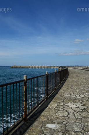 防波堤の灯台と海沿いの遊歩道の写真素材 [FYI03415108]