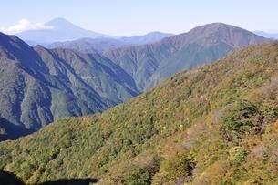 秋の丹沢山地と富士山の写真素材 [FYI03415234]