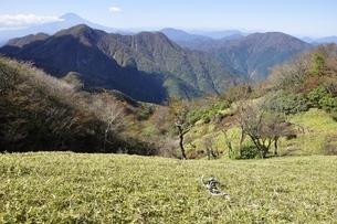 蛭ヶ岳からの眺望 富士山と西丹沢の写真素材 [FYI03415280]