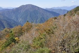 秋色の山と大室山の写真素材 [FYI03415303]