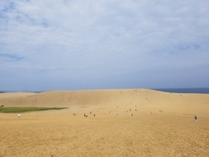 砂丘の写真素材 [FYI03415315]