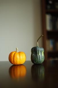 2つのかぼちゃの写真素材 [FYI03415636]