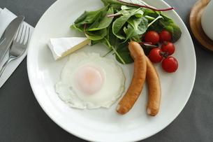 朝食 ワンディッシュの写真素材 [FYI03415639]