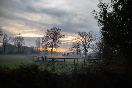 日没時の霧がかったイギリスの田舎の田園風景の写真素材 [FYI03416093]