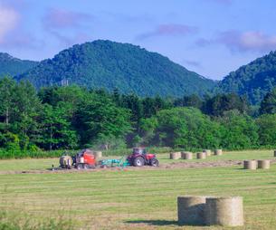 北海道 自然 風景 牧草地の写真素材 [FYI03416448]