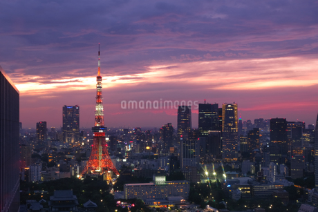 世界貿易センタービル 日本 東京都 港区の写真素材 [FYI03416473]