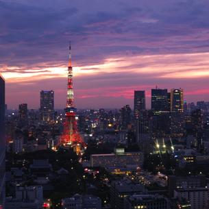 世界貿易センタービル 日本 東京都 港区の写真素材 [FYI03416474]