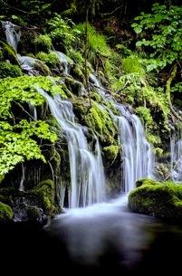 元滝伏流水(もとたきふくりゅうすい) 日本 秋田県 にかほ市の写真素材 [FYI03416542]