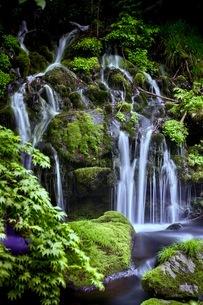元滝伏流水(もとたきふくりゅうすい) 日本 秋田県 にかほ市の写真素材 [FYI03416547]