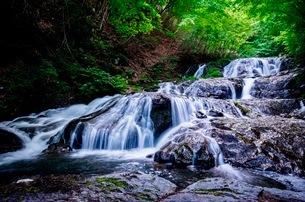 魚止めの滝 日本 群馬県 長野原町の写真素材 [FYI03416554]