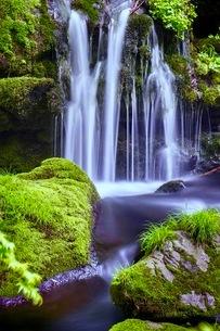 元滝伏流水(もとたきふくりゅうすい) 日本 秋田県 にかほ市の写真素材 [FYI03416560]