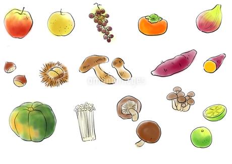 秋の味覚13種類セットのイラスト素材 [FYI03416660]