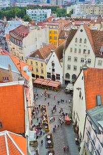 エストニア・タリン旧市街の旧市庁舎の塔から見た色々カラフルな建物見える旧市街と遠くに見える新市街・旧市街は世界遺産の写真素材 [FYI03416737]