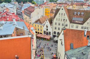 エストニア・タリン旧市街の旧市庁舎の塔から見た色々カラフルな建物見える旧市街と遠くに見える新市街・旧市街は世界遺産の写真素材 [FYI03416738]