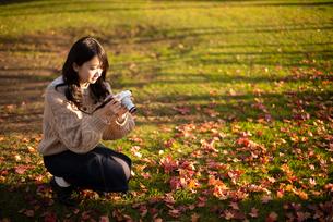 カメラを持つ女性の写真素材 [FYI03416823]