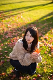 紅葉を持つ女性の写真素材 [FYI03416827]