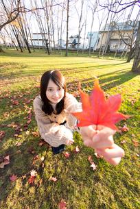 紅葉を持つ女性の写真素材 [FYI03416973]