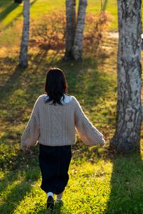 林の中を歩く女性の後ろ姿の写真素材 [FYI03416981]