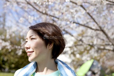 遠くを眺める女性の写真素材 [FYI03417249]