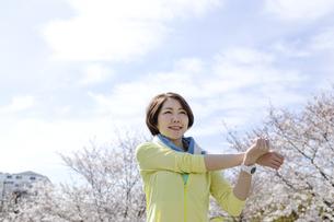 ストレッチをする女性の写真素材 [FYI03417257]