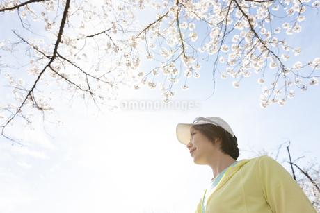 遠くを眺める女性の写真素材 [FYI03417261]