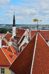 コフトゥ展望台から見たエストニア・タリン世界遺産の旧市街の中世的な建物が並ぶ景観と遠くに見える新市街・旧市街は世界遺産の写真素材 [FYI03417530]