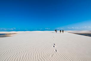 レンソイス砂漠を歩く人と風紋の写真素材 [FYI03417551]