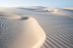 レンソイス砂漠の砂丘の風紋の写真素材 [FYI03417556]