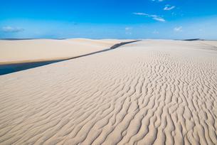 レンソイス砂漠の風紋の写真素材 [FYI03417567]