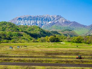 春の田畑を横切る蒜山大山スカイラインの風景の写真素材 [FYI03417621]