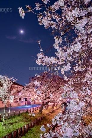 小江戸川越 日本 埼玉県 川越市の写真素材 [FYI03417647]