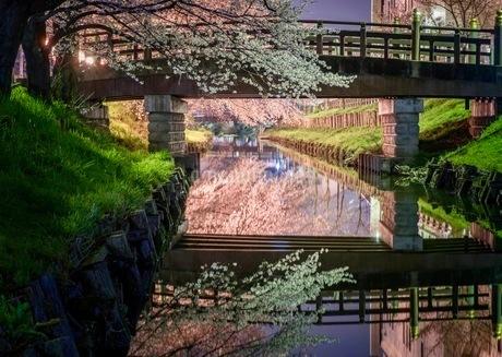 小江戸川越 日本 埼玉県 川越市の写真素材 [FYI03417651]