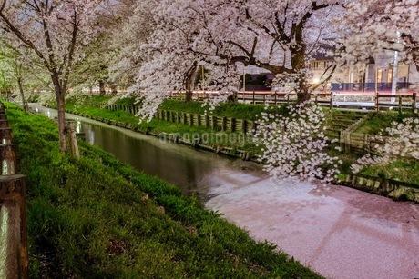 小江戸川越 日本 埼玉県 川越市の写真素材 [FYI03417654]
