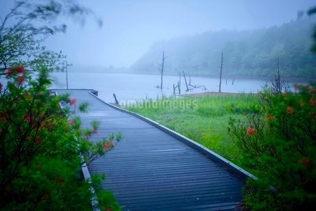 女神湖 日本 長野県 立科町の写真素材 [FYI03417671]