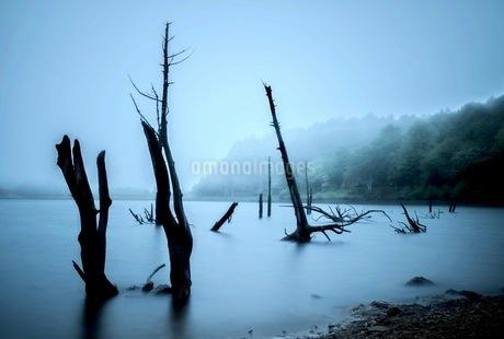 女神湖 日本 長野県 立科町の写真素材 [FYI03417672]
