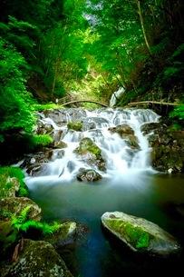 浅間大滝 日本 群馬県 長野原町の写真素材 [FYI03417690]