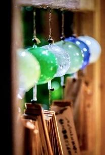 川越氷川神社 日本 埼玉県 川越市の写真素材 [FYI03417703]