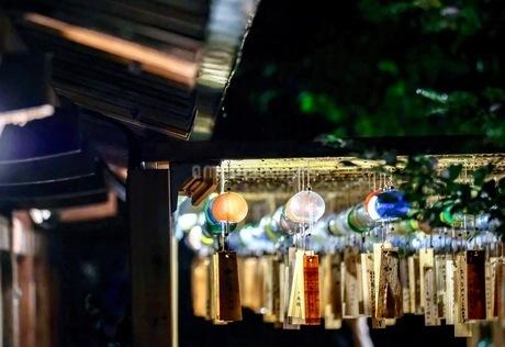 川越氷川神社 日本 埼玉県 川越市の写真素材 [FYI03417704]